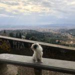 Maia e la vista più bella Su Fiesole