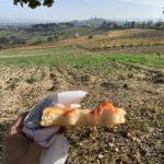 pranzo con vista San Gimignano