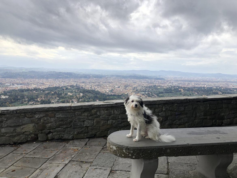Maia und der Blick über Florenz
