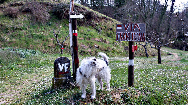 La Maia sulla Via Francigena