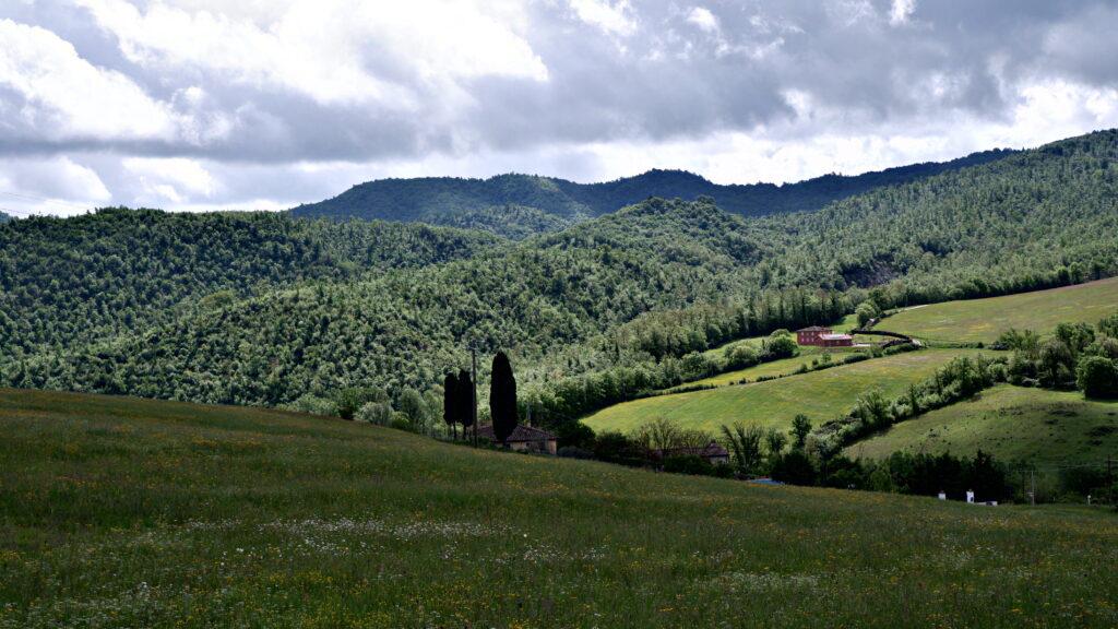 le campagne per arrivare a Bivigliano