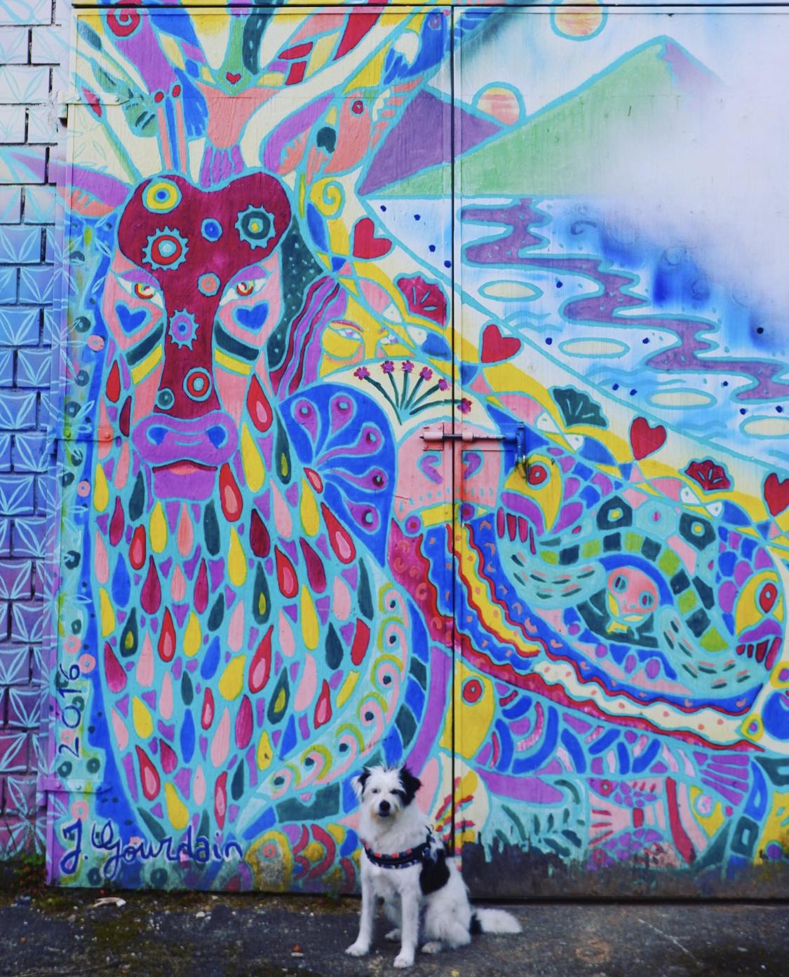Maia davanti un murales prima del Monte Adone