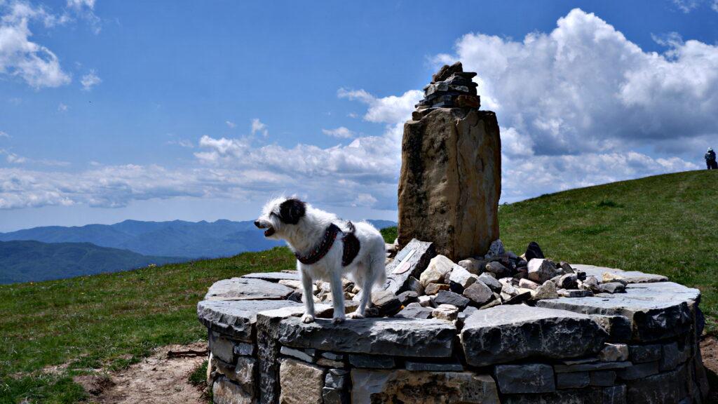 Maia sul Monte Valoria