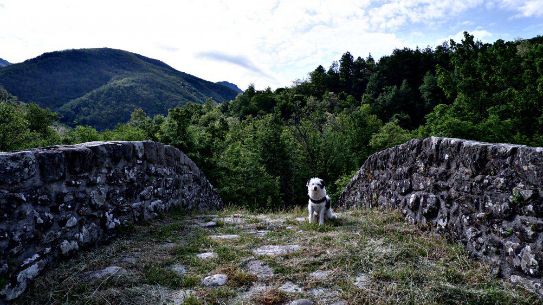 Maia sul Ponte medievale Groppodalosio