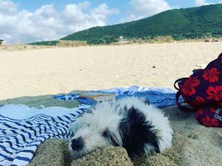 La Maia sulla sua adorata spiaggia