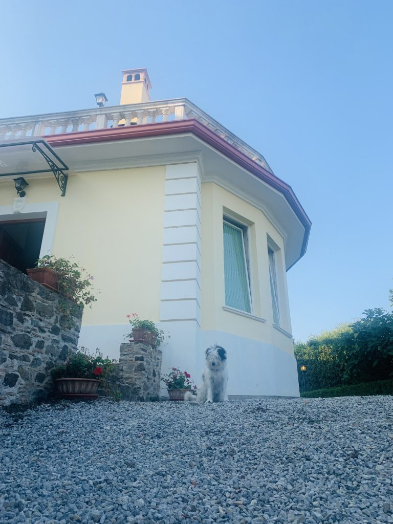 Maia davanti al B&B Villa Elisa in Calabria